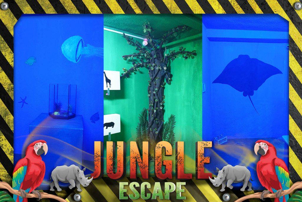jungle4