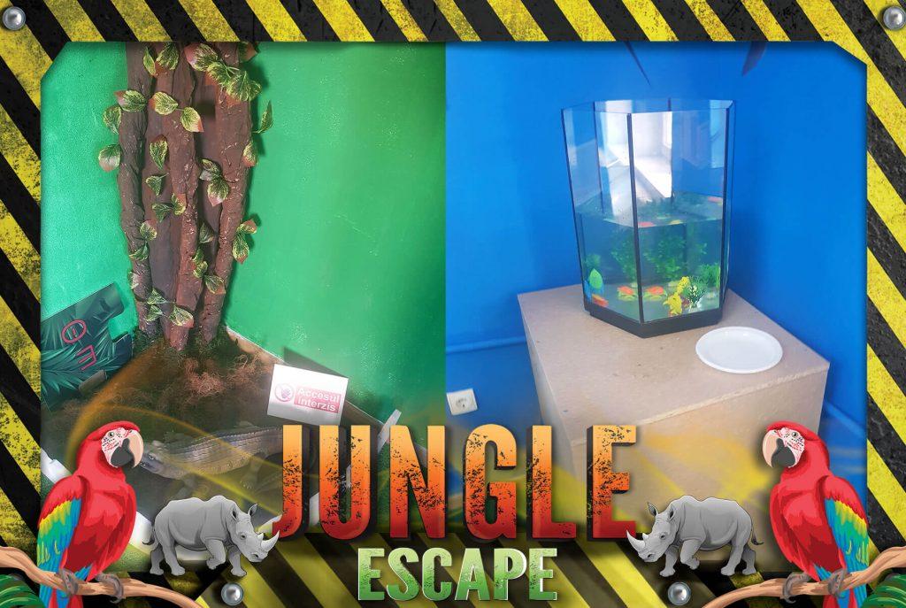 jungle8